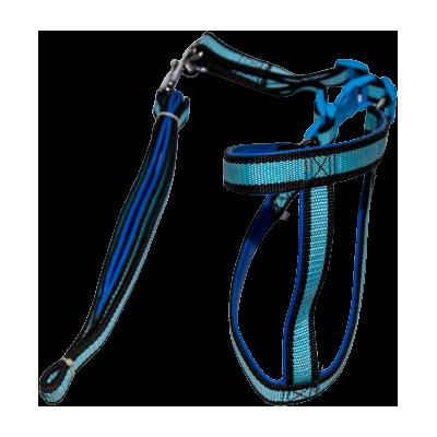 Full body padding dog belt for walking